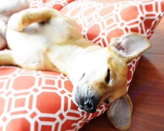 Dog Bed-Dog Bed Pillow-Small Dog Bed-Dog Bed Cover-Reversible Pillow-Large Dog Bed-Modern Dog Bed-Dog Bed Print-Dog Bedding-Designer Dog Bed