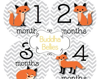 Baby Monthly Stickers Fox Stickers Month Baby Stickers Fox Baby Shower Gift Red Fox Month Baby Stickers Milestone Baby Decals