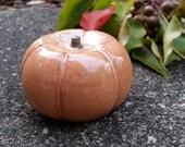 Ceramic Pumpkin Handmade Pottery Fall Decor