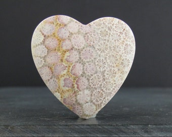 Heart shape fossil coral  cabochon, Natural stone, jewelry making supplies S7081