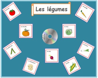 VEGETABLE FRENCH FLASHCARDS with Pronunciation on Audio File-Learning Vegetable Words in French With Printable Cards,Teaching Resources