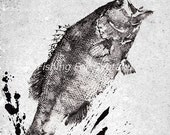 Leaping LARGEMOUTH BASS Gyotaku print - traditional Japanese fish art - by dwight hwang