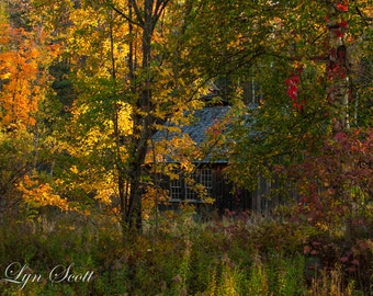 The New Hampshire Barn -  Nature photography, landscape,, fall, autumn, fine art, leaves, New Hampshire, New England, home decor, art