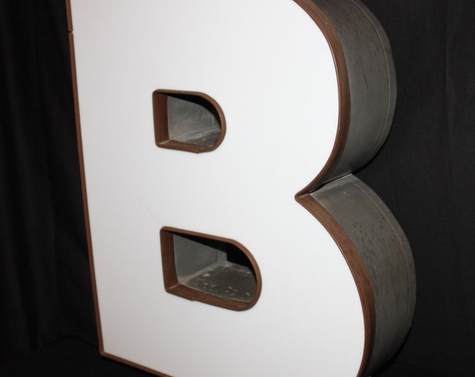 """Industrial Neon Sign the Letter """" B """"  Working Neon Light"""