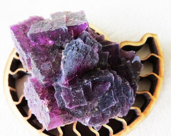 Purple Fluorite Crystal Specimen Raw Gemmy Purple Display Crystal