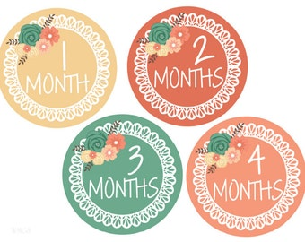 Baby Month Stickers Girl Monthly Stickers Baby Monthly Stickers Baby Girl Milestone Month Stickers Monthly Baby Stickers