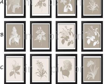 Flower Garden Botanical Print Gallery Set of 6 - Art Prints (Featured in Tan Background and Cream) Creme Khaki (Unframed)