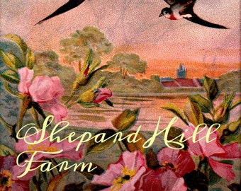 Altered 1909 Swallows Birds Photo Postcard DIGITAL Nature Lake Flowers  COMMERCIAL LICENSE
