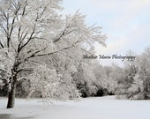 The Path Not Taken, Winter Park Scene, fine art photo 5x7