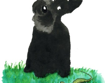 Scottie  Dog & Lizard Watercolour Art Print