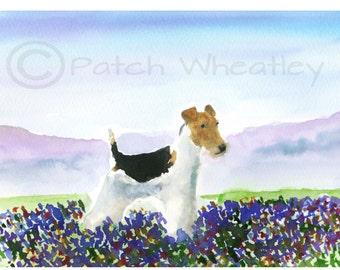 Wire Fox Terrier Dog Art Print 'Wild Flowers'
