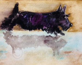 Scottie Dog Art Print Scottish Terrier 'Scottie Reflection' #94