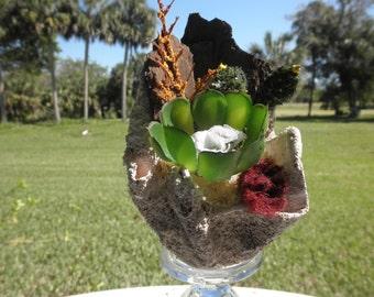 Small Succulent Arrangement.succulent centerpiece,Hand crafted free form planter , 3 faux plants.
