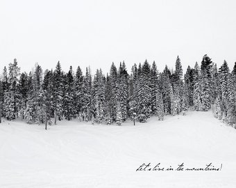 Bear Lake Snow- Utah postcard