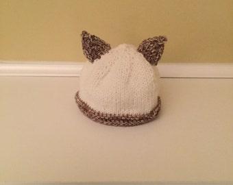 Hat, kitty