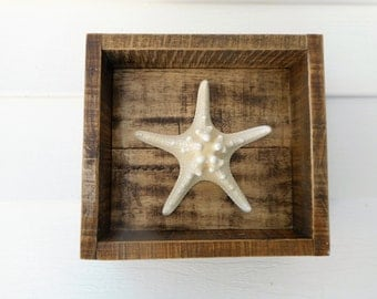 White knobby starfish shadow box / beach decor / nautical decor