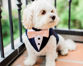 Blue Formal Dog Tuxedo ,Wedding Tuxedo For Dogs ,Custom Made Suit ,pet wedding attire   Tuxedo, with choice of color bow tie