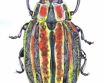 Stripy Beetle Original Art