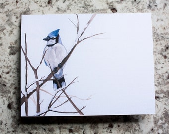 Winter Blue Jay Cards