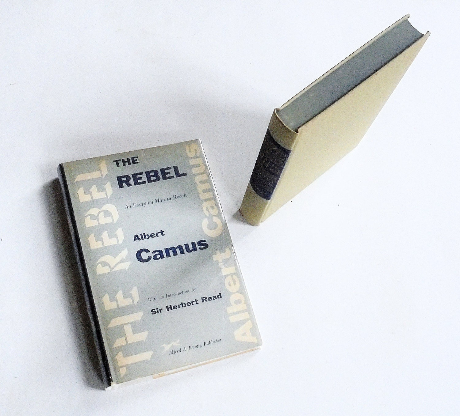 albert camus the rebel essay  albert camus the rebel essay