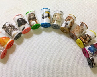 Paper Bead Set of Animals, Reptiles, Birds, Fish and much more!