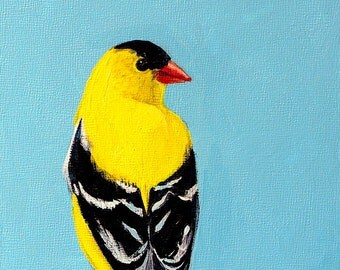 Goldfinch small original bird painting canvas panel goldfinch painting acrylic yellow black white