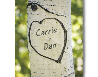 Personalized Sitting In A Tree Photo Canvas Wall Art