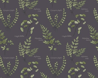 The Botanist A121-3 Dark Brown ferns leaves Lewis & Irene Patchwork Quilting Fabric