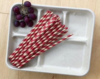 Biodegradable Retro Style Lunch Trays -12 Pack and Kraft Paper Drinking Straws - 50 Pack Red, Kraft Brown- Birthday Supply- Picnic Supply