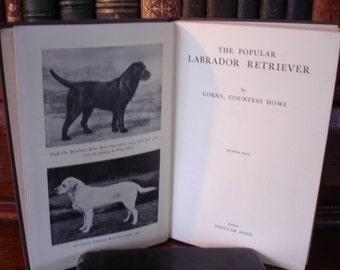 The POPULAR LABRADOR RETRIEVER