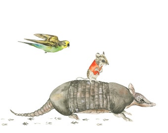 Exploring The Wild | Art Print | wall art, wild, budgie, mouse, armadillo