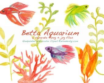 Watercolor Clipart - Watercolor Betta Clip Art - Watercolor Fish  Clipart Illustration