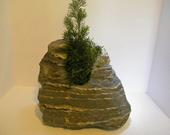 Bonsai Gardening/ Bonsai Planter/Mountain Rock Planter