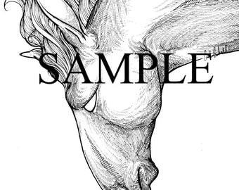 Horse Print Postcard