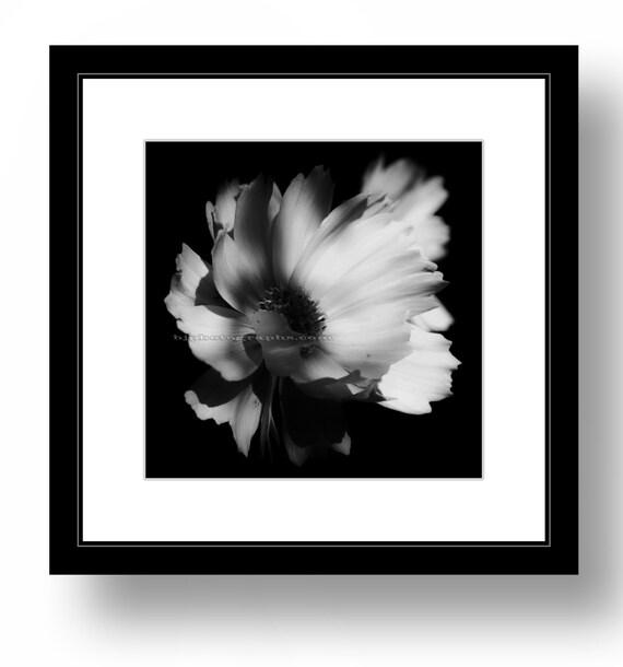 carr imprim photographie nature 12 x 12 pouces tout pr t. Black Bedroom Furniture Sets. Home Design Ideas
