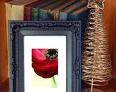 Framed  Botanical Photo, 15cm x 19cm,   bedroom decor, red, cream, Black Friday Sale, Sale,