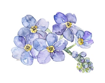 """Forget Me Not Painting - Print from my Original Watercolor Painting, """"Forget Me Nots"""", Garden Decor, Blue Flower, Watercolor Flower"""