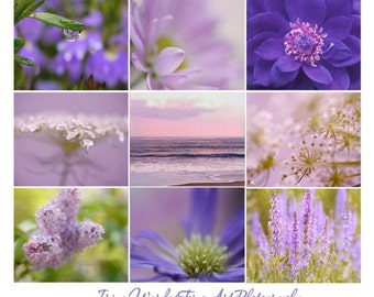 Purple photography set 9 prints 12x12, purple wall art 9 floral art prhotos 5x7, lavender wall art print set 9 pictures of nature photo gift