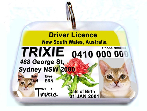australia driver license nsw new south wales personalized pet. Black Bedroom Furniture Sets. Home Design Ideas