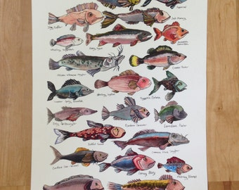Field Guide of Imaginary Fish art print, original ink and watercolor drawing, playful quirky art print