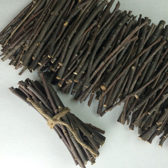 Small oak branches inch twigs hand cut for crafts