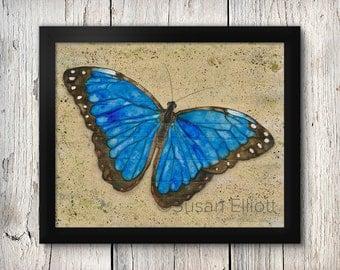 Butterfly Fine Art Print