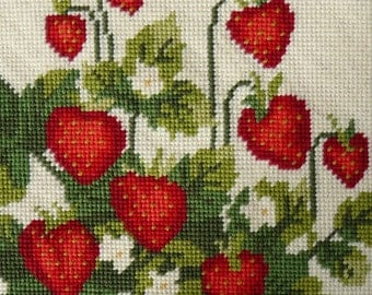 TPR 282 Strawberry Starter Tapestry Needlepoint Kit Charted
