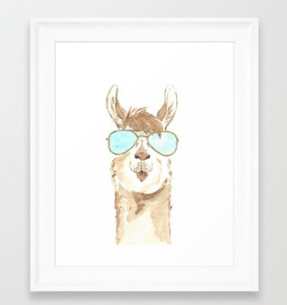 Image result for llama with sunglasses