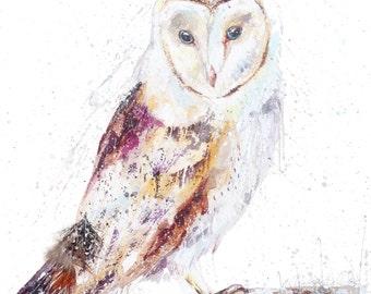 A4 Wild Barn Owl Wildlife wild bird Watercolour  art print by nicola jane rowles