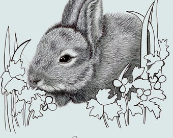 Original drawing of a Rabbit in black biro and H3 pencil (on A4 drawing paper)