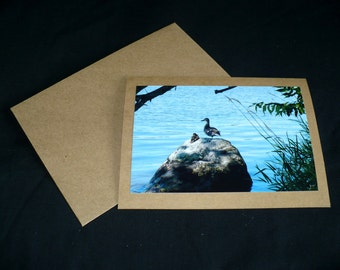 Ducks Blank Photo Greeting Card All Occasion Nature Landscape Fine Art Phototography