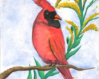 Cardinal and Goldenrod watercolor art