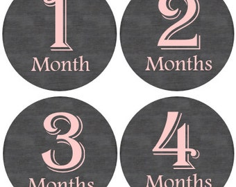 Baby Month Stickers Girl, Milestone Stickers, Month Stickers, Monthly Baby Stickers, Baby Stickers, Pink  #20
