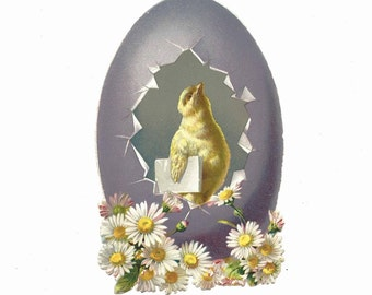 Antique Victorian Diecut Scrap Easter Card Anthropomorphic Chick Holding Letter Hatching From Purple Egg with Daisies ~ 5373Pa